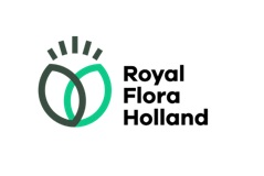Royal FloraHolland Aalsmeer
